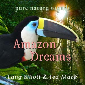 Amazon Dreams 300px
