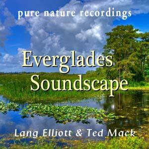 Everglades Soundscape 300px