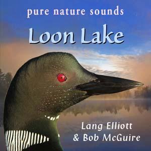 Loon Lake 300px