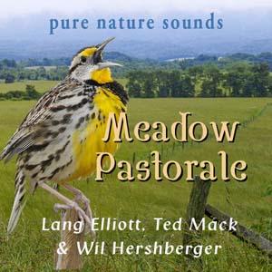 Meadow Pastorale 300px