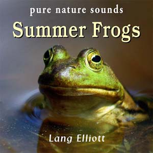 Summer Frogs 300px