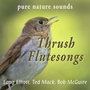Thrush Flutesongs 300px