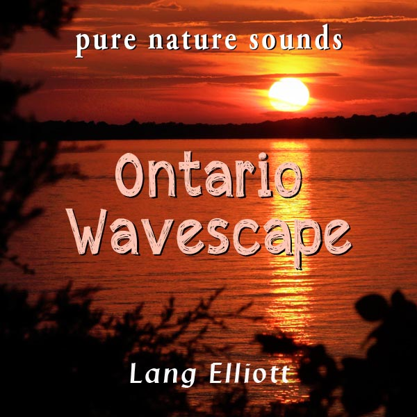 Ontario Wavescape - cover art